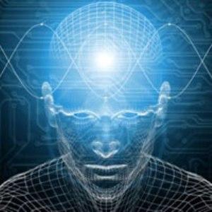 human-brain-neuroevolution